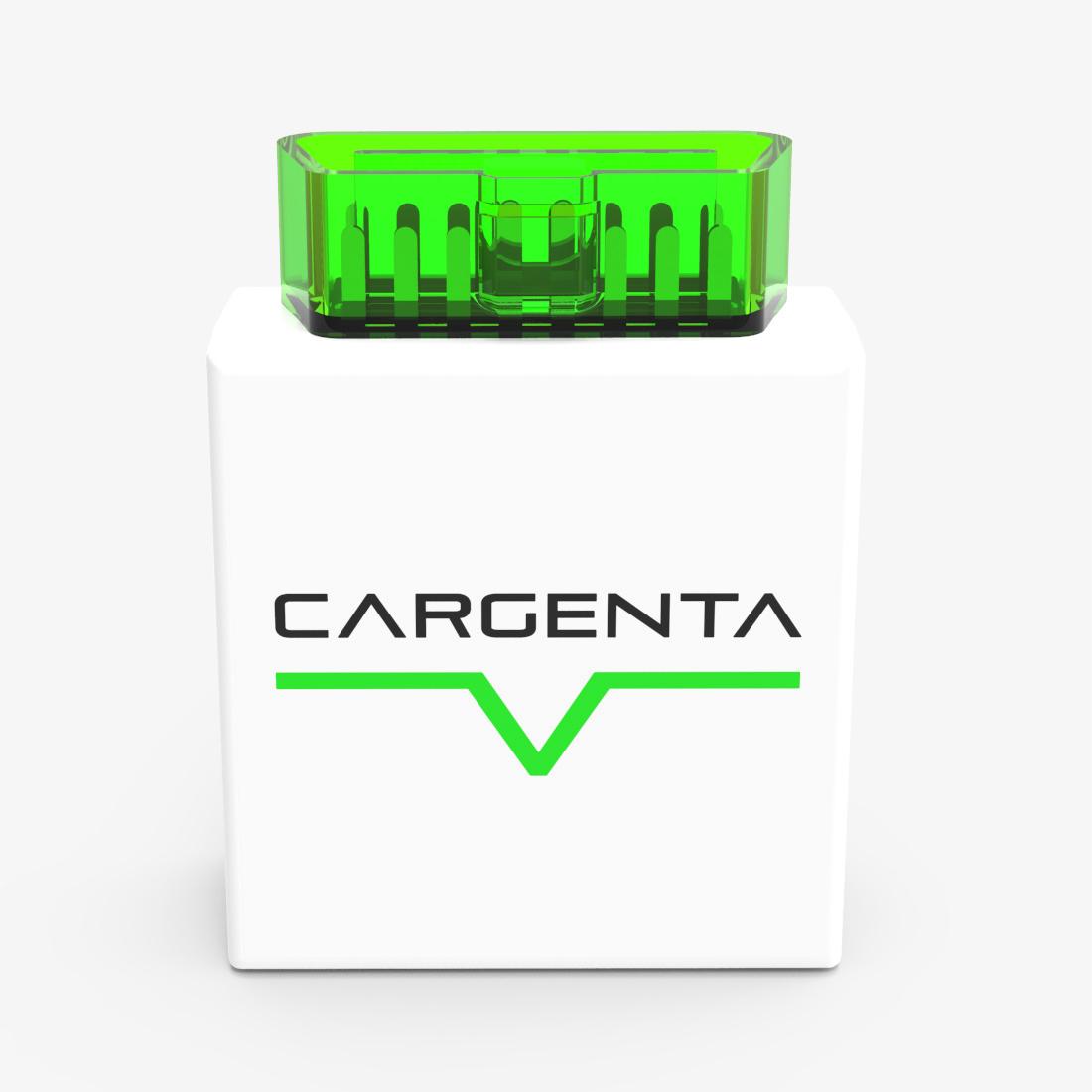 cargenta_brain_1