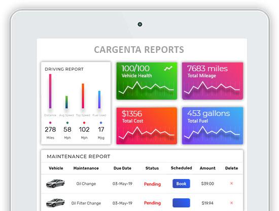 reports-and-analytics